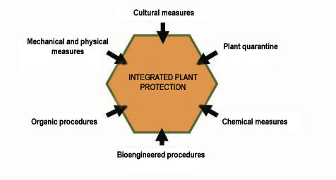 A picture shows Integrated Pest Management