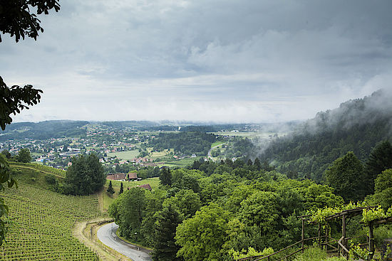 The picture shows the landscape of Weststeiermark
