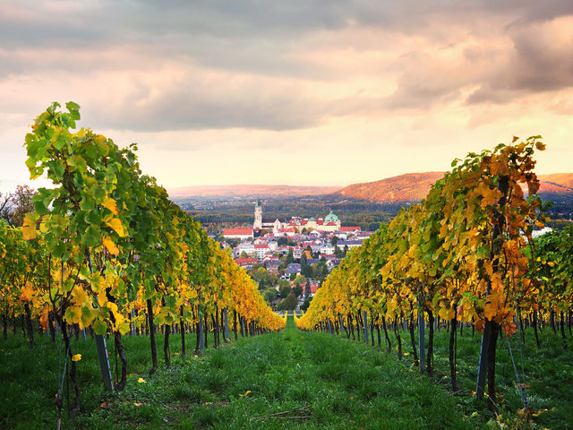 The picture shows the view in autumn to the Stift Klosterneuburg.