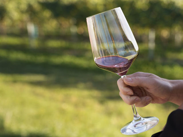 A picture shows a hand holding a glass of red wine; a vineyard in the background.